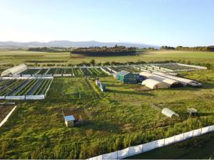 Tamalu Farm