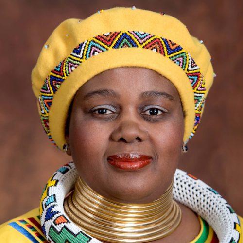 Minister of Energy Mmamoloko Kubayi Official Portarits, 29/05/2017