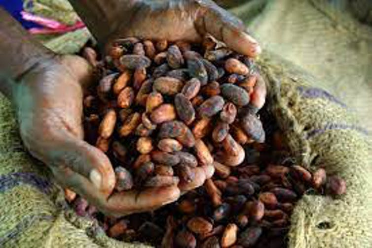 West African cocoa farmers are largely poor despite the value of their crop. Irene Scott/Wikimedia Commons, CC BY-SA